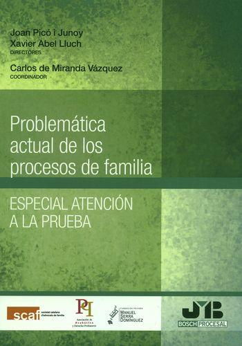 PROBLEMATICA ACTUAL DE LOS PROCESOS DE FAMILIA. ESPECIAL ATENCION A LA PRUEBA