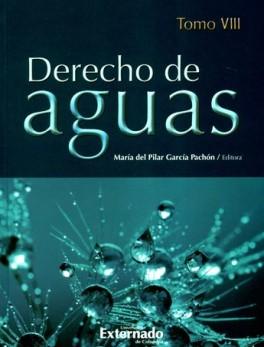 DERECHO DE AGUAS TOMO VIII