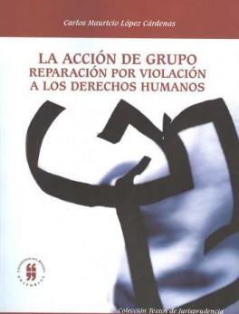 ACCION DE GRUPO REPARACION POR VIOLACION A LOS DERECHOS HUMANOS, LA